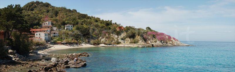 isola-elba_800x248